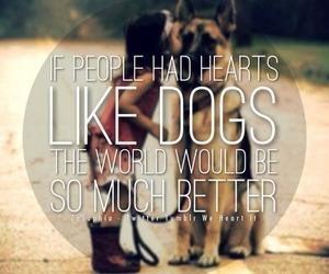 zosophia, if people had hearts, and like dogs the world image