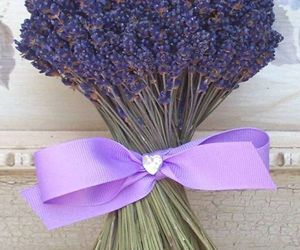 lavender and shabby chic image