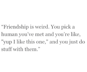bff, friendship, and quotes image