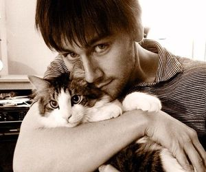 cat, bash, and torrance coombs image