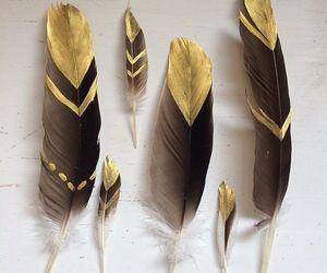 art, feathers, and gold image
