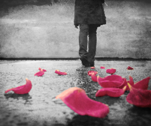 pink, alone, and flowers image