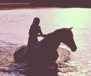 amazing, horses, and swimming image