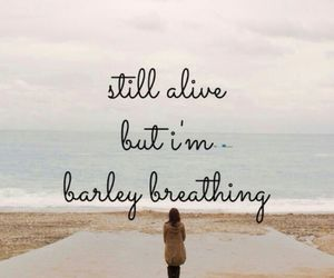 quote, the script, and breathing image