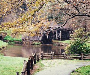 pond, trip, and wooden house image
