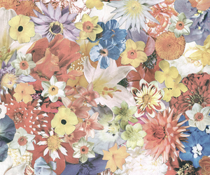 flowers, colorful, and pattern image