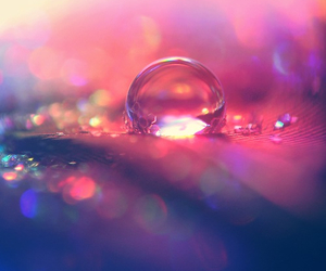 water, beautiful, and pink image