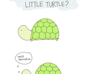 turtle, cute, and funny image