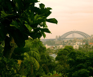 australia, photography, and Sydney image