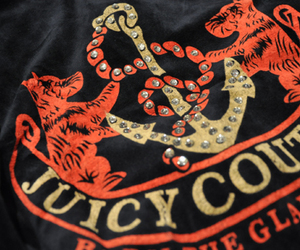 juicy couture, anchor, and fashion image