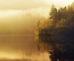 lake, nature, and tree image