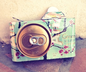 arizona, colourful, and flower image