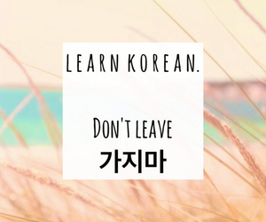 beach, couple, and korean image