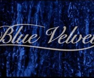 Blue Velvet and david lynch image
