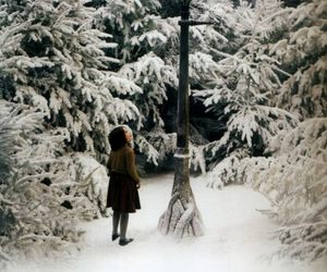 narnia, Lucy, and winter image