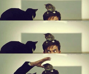 david tennant, cat, and doctor who image