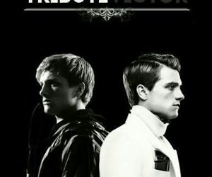 the hunger games, tribute, and victor image