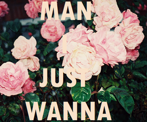 cuddle, want, and floral image