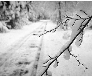 pretty and winter image