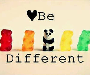 bears, red, and be different image