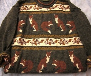 fox, sweater, and vintage image