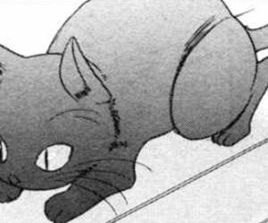 kuro, manga, and yaoi image