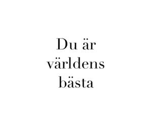 swedish and text image