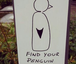 black and white, funny, and penguin image