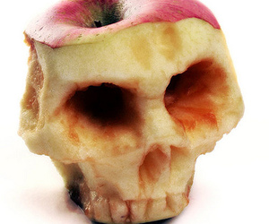apple and skull image