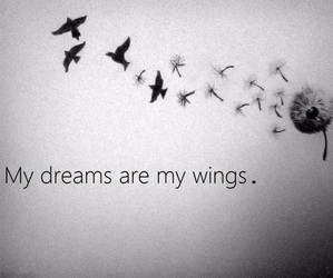Dream and wings image