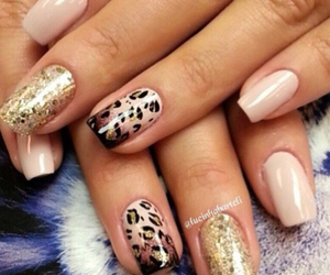 beauty, leopard, and nails image