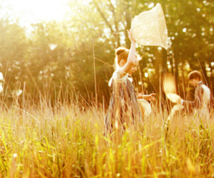 bright star, grasses, and butterfly catching image