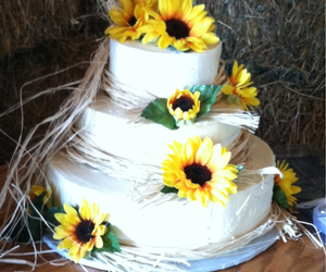 country, rustic, and wedding image