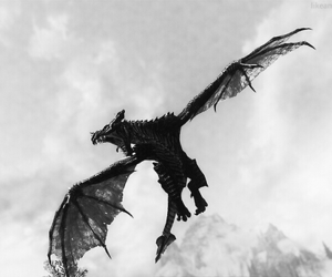 black and white, dragon, and game image