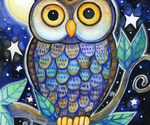 owl, blue, and night image
