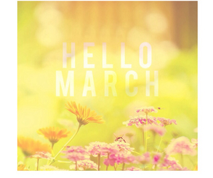 flowers, spring, and hello march image