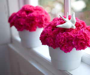 flowers, pink, and bird image