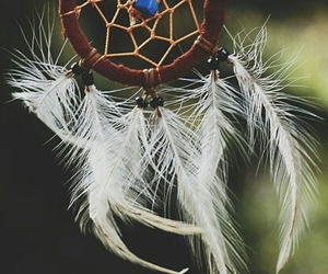 Dream and catcher image
