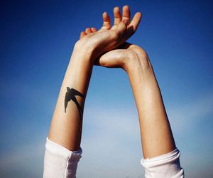 tattoo, bird, and sky image