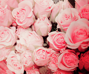 flowers, pretty, and awesome image