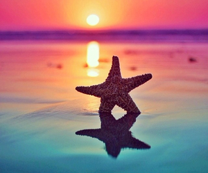 summer, star, and sea image