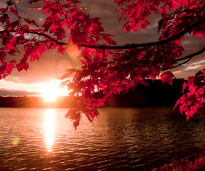 red, sunset, and nature image
