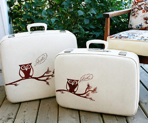 owl, suitcase, and cute image
