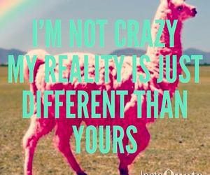 crazy and love image