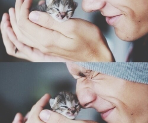 cute, cat, and boy image