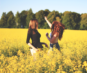 dance, field, and flowers image