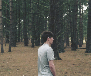 boy, forest, and guy image