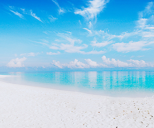 beach, paradise, and sky image