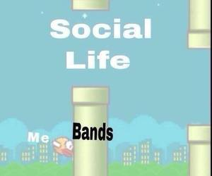 bands, flappy bird, and funny image