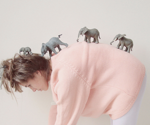 elephant, girl, and indie image